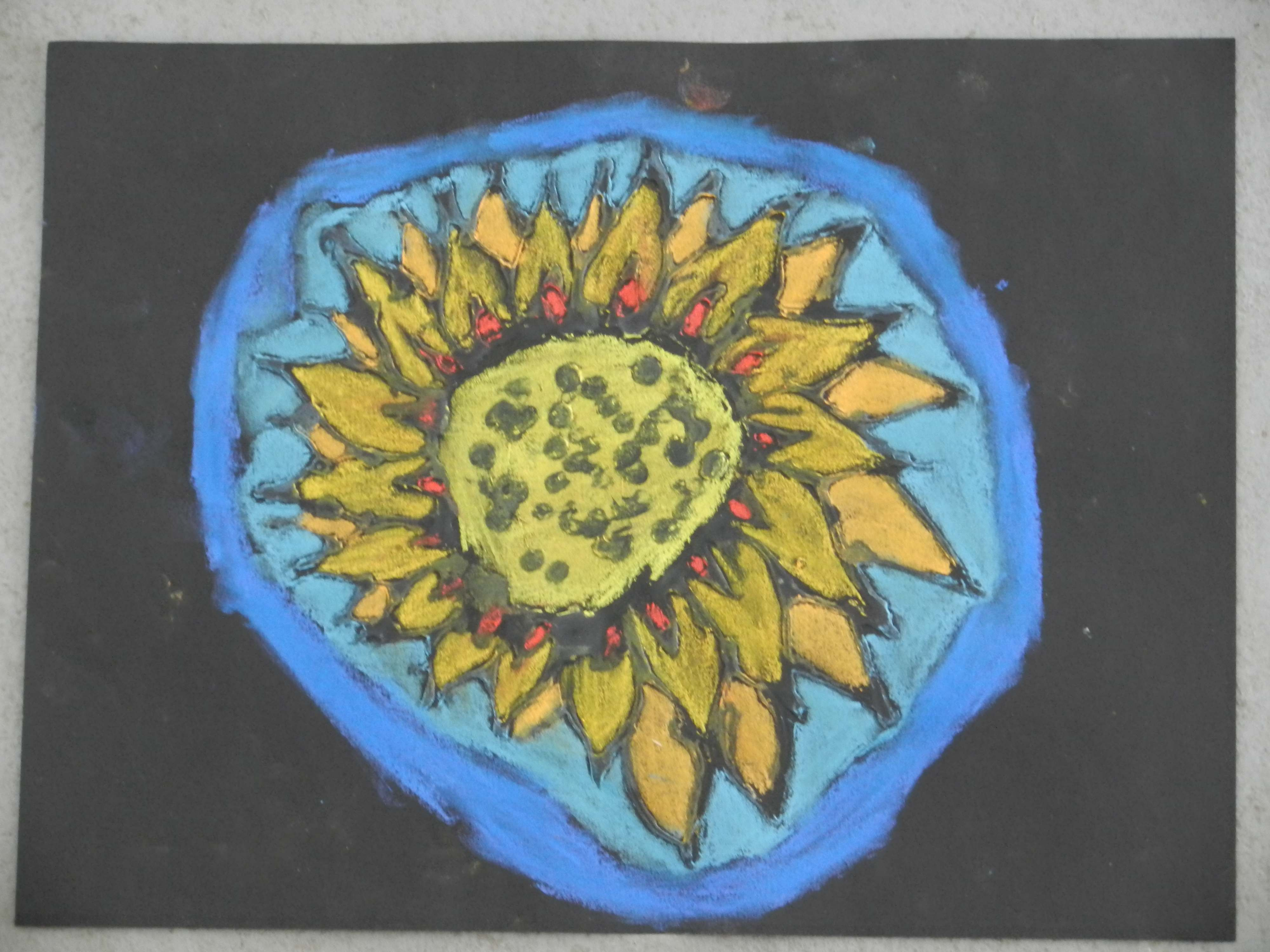 the smartteacher resource  chalk pastel observational flowers